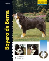 Boyero de Berna (Excellence-Raza especial)