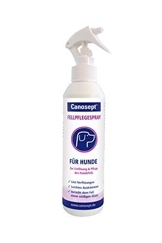 Canosept Fellpflegespray für Hunde - Pflegemittel für leicht kämmbares, entfilztes & glänzendes Hundefell - 1 x 250 ml