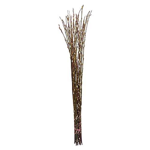10 Extra Lange Palmkätzchenzweige ca. 100 cm: Salweidezweige für große Bodenvase | Frühlings- und Oster-Deko Natur | Weidenkätzchen