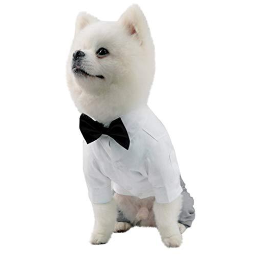 Für Kostüm Einfache Katzen - Marvvola Mode Einfarbig Haustier Kleidung,Hohe Qualität Haustier Hochzeitskleidung,Hund Kostüme Haustier Katzen Kleidung Für Hund,Katzen (L, Weiß)