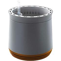 AIRY - Hochwirksame Luftreinigung mit Zimmerpflanzen in steingrau (Honey Mustard - gelb-braun)