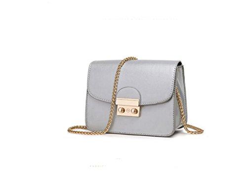 catena Ms. di piccolo sacchetto quadrato, sacchetto di spalla casuale, sacchetto del messaggero di modo, un piccolo sacchetto Silver