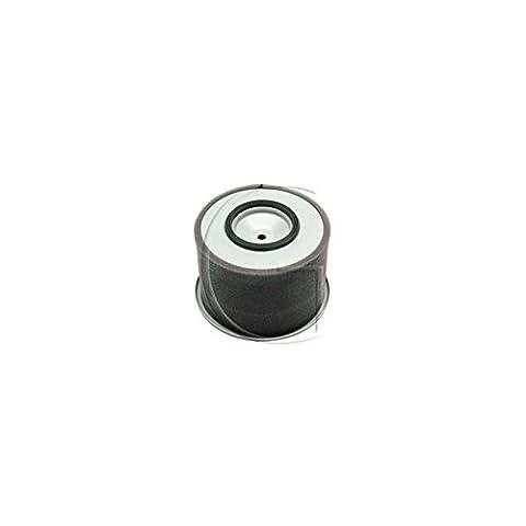 Filtre à air adaptable pour KUBOTA origine 13892-11080, 12451-11080