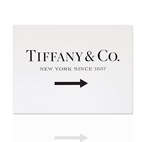 la-pintura-moderna-tiffany-co-de-nueva-york-desde-1837-del-encanto-listo-para-colgar-la-lona-de-arte