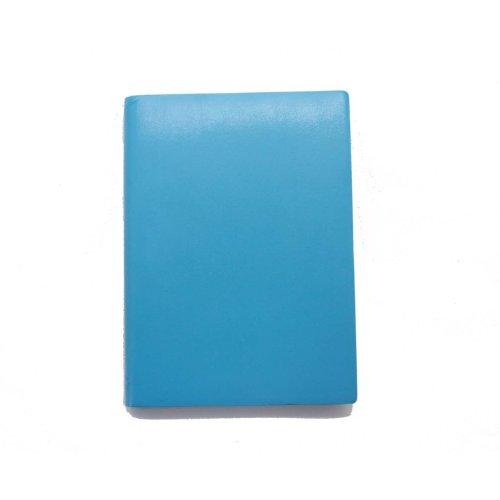 paperthinks-cahier-ligne-256-pages-avec-couverture-en-cuir-recycle-bleu-clair-format-l-12-x-17-cm