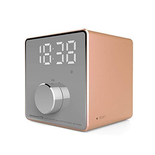 ZYWTZ Bluetooth Lautsprecher, 3600 mAh Batterie mit großer Kapazität, Unterstützung FM Radio Funktion, TF-Karte/U-Diskette Unterstützen, Kompatibel Mit Einer Vielzahl Von Bluetooth-Geräten,Gold