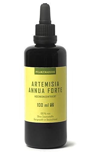 Artemisia Annua Forte Pflanzenauszug, hochkonzentrierter Extrakt des Einjährigen Beifußes 100 ml