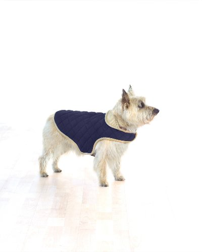 Company of Animals Dog Gone Smart Jacke, gesteppt, 61 cm, rot