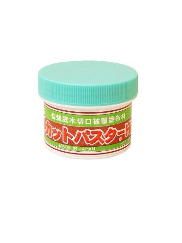 Bonsai Wundpaste Für Nadelbäume Wundverschlußpaste 160g Dose