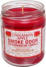 Smokers Candle Geruch von Rauch aus Kerze Apfel-Zimt-13 Kammerjäger