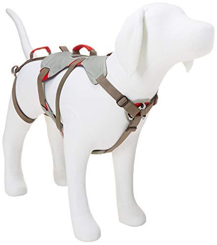 Ruffwear Kletter-Hundegeschirr, Mittelgroße Hunderassen, Größenverstellbar, Größe: M, Grau, Doubleback Geschirr, 30301-045M