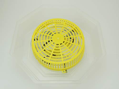 Inkubator Brutkasten Campo24 C1 - 5