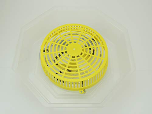 Inkubator/Brutkasten/Brutmaschine/Brutapparat/Brüter/Incubator Campo24 C1 ® - 5