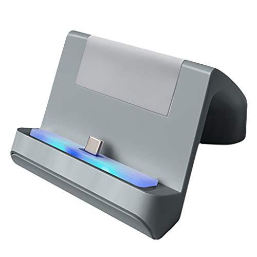 HSKB Gamepad Ladeständer, Charging Stand Ständer Einstellbare USB-Ladestation Typ C Schnellladegerät für NS Switch Lite Console (Grau)