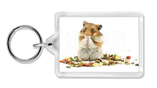 Advanta - Keyrings Lunch Box Hamster Foto Schlüsselbund TierstrumpffüllerGeschenk