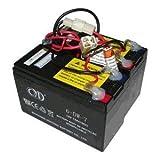 Razor E200 / E300 - Batería de repuesto para patinete...