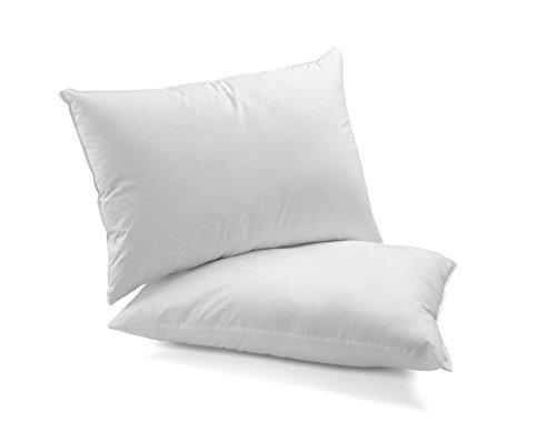 DAGOSTINO HOME - Pack de 2 almohadas de Fibra Supersuave lavables 40x60...