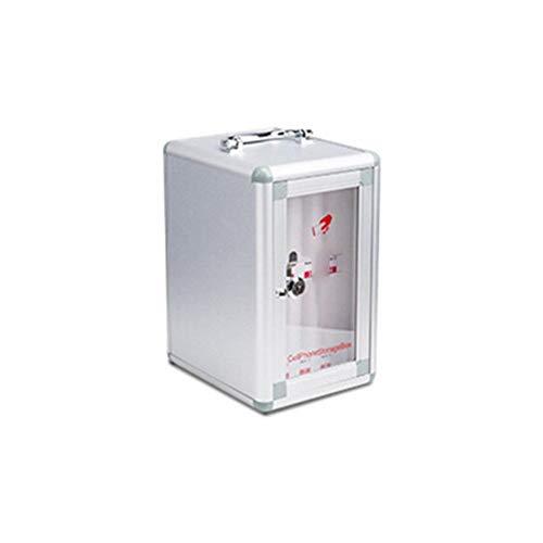 Earthily Aluminiumlegierung Pocket Chart Storage Cabinet Safe für Handys, Wandmontage mit einem verschlossenen, kann von Hand getragen werden amiable (Storage Chart Pocket)