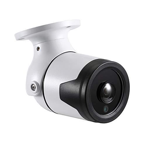 RevoTech - I6046-P PoE Ojo de pez a Prueba de Agua 1920 x 1080P 2.0MP Bullet Cámara IP para Exteriores Cámara metálica de Seguridad ONVIF Night Vision P2P CCTV CAM con IR-Cut (Blanco)