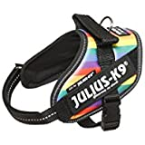 julius-k9 IDC Powerharness, tamaño mm, arco iris