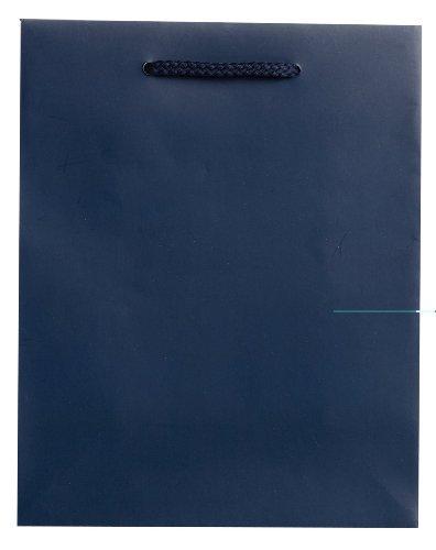 JILLSON Roberts Medium Geschenk Taschen, Gold Sparkle (Katzentoilette) Navy Matte
