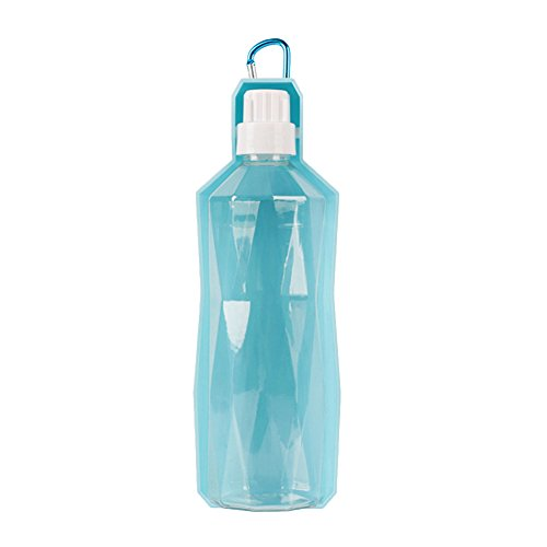 DAYNECETY Portable Dog Water Bottle Dispenser Pet Travel Bottle No Spill Drinking Fountain (L, Blue)