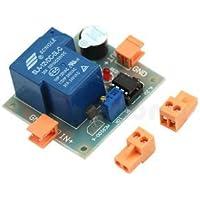 Alarma Bloomgreen Co. estrenar Acumulador sonido de la luz evitar el exceso de descarga del controlador de 12V de bajo voltaje