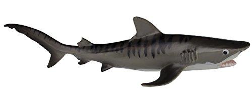 Safari MB Tiger Shark