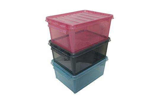 Orthex Smart Store Colour 3er-Set Clipbox, PP, Sortiert, 40 x 30 x 25 cm, 3-Einheiten