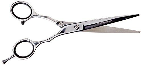 """Artero 6,5 cm-Forbici da parrucchiere, motivo """"Queen"""""""
