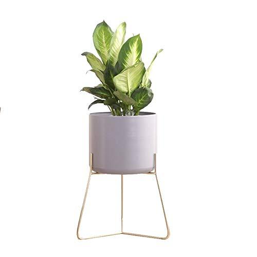 CLLCR Stand de Fleur - Creative Nordic Iron Étagère De Fleurs Salon Intérieur Balcon Type De Sol Moderne Simple Stand De Fleurs,50 * 28 * 37cm