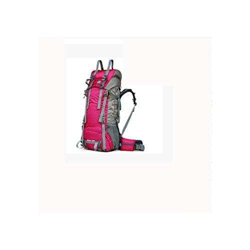 60L + 10L Sacchetto di alpinismo di sacchetto polare professionale di grande capacità Uomini e donne impermeabili zaino da viaggio di viaggio , royal blue rose red
