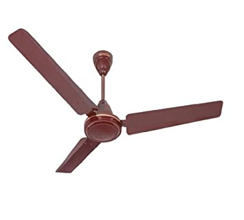 Buy havells pacer 1200mm ceiling fan brown online at low prices buy havells pacer 1200mm ceiling fan brown online at low prices in india amazon mozeypictures Choice Image