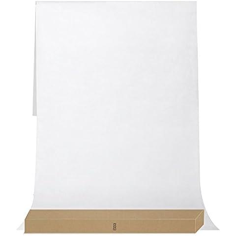 ESDDI 2 x 3 M Fondale Fotografico professionale Bianco Sfondo Studio Kit in Tessuto Pieghevole ottime illuminazioni per Studio Fotografico, Casa Video ecc