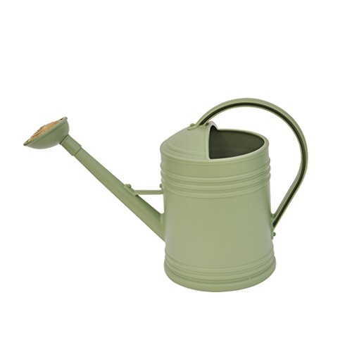 Wddwarmhome Réservoir d'arrosage de ménage de bouilloire d'arrosage de la résine verte 3.6L petit arrosoir