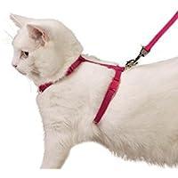 Ducomi® Silvestro Harnais réglable et laisse 105cm en nylon pour chats, lapins et chiots