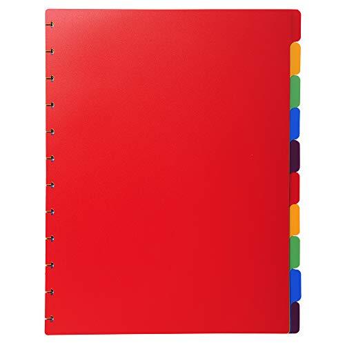 Exacompta 86003E - Recambio de 12 separadores para las carpetas de fundas con anillas, A4, multicolor