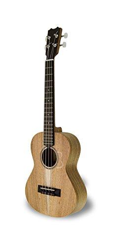 apc-instruments-ts-ukelele