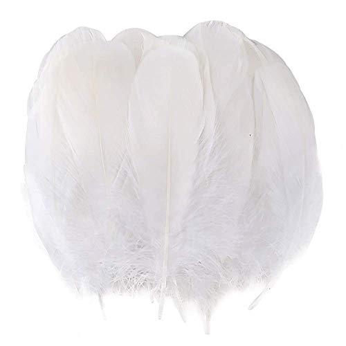 BAKHK 150 Stück Natürlich Größere Weiß Federn zum Basteln DIY, Naturfedern Gänsefedern für Kopfschmuck