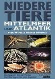 Niedere Tiere Mittelmeer + Atlantik - Peter Wirtz