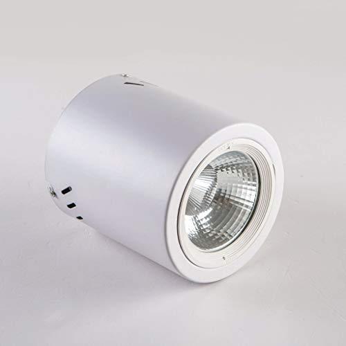 M-zmds 10W LED Downlight évalué par feu peut COB Twist de surface et verrouiller Downlight incliné interchangeable IP20 pour l'éclairage commercial d'hôtel Spotlight/lumière neutre