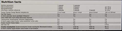 Olimp Creatine 1250 Mega Caps | 120 Kapseln | Kreatin-Monohydrat | Fitnessstudio, Radsport, Laufen | Regeneration