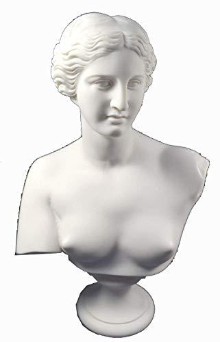 Aphrodite Escultura Estatua de Venus Diosa del Amor Gran Busto