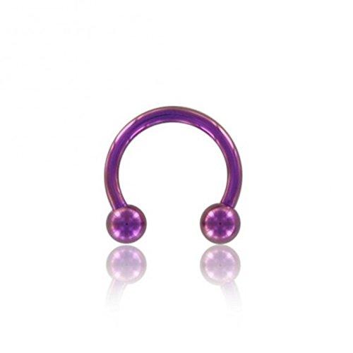 eeddoo Color–Titane–CBR Fer à Cheval–Violet (Piercing CBR Horse Shoe pour u.a. Lèvres Oreille Nez intime Tragus) Epaisseur: 1,6 mm   Dia: 10 mm   Sphères: 4 mm