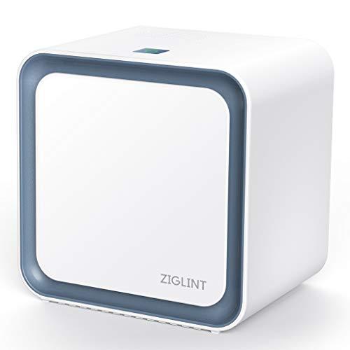 ZIGLINT Purificateur d'Air Ionique 3 en 1,3 Etapes de...