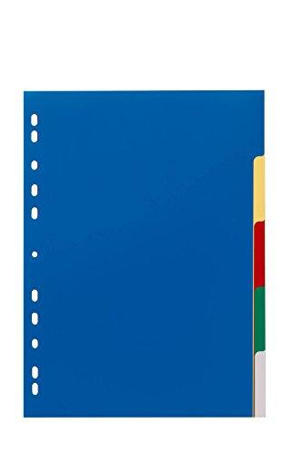 DURABLE Hunke & Jochheim Register, PP, blanko, farbige Taben, DIN A4, 210/220 x 297 mm, 5 Blatt - 3