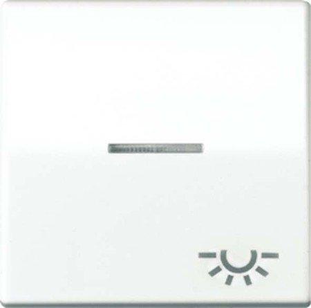 Jung AS591KO5LWW Wippe mit Symbol Licht KO