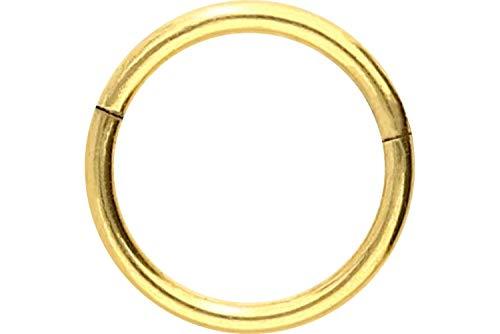 enstahl Segmentring Clicker | Piercing ✔ Ring ✔ Septum ✔ Helix ✔ Tragus ✔ | Farb & Größenauswahl ()