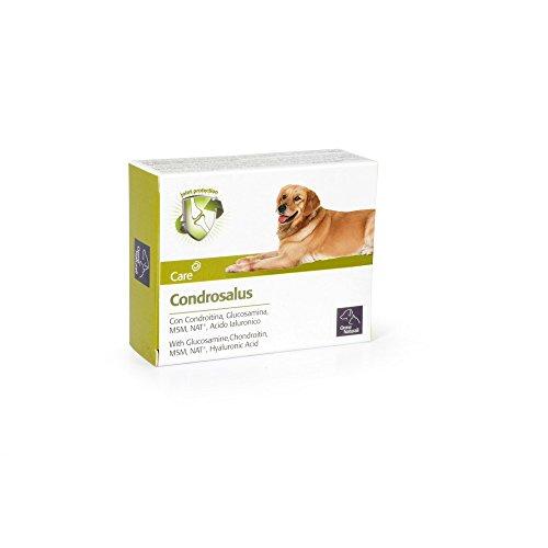 condrosalus compresse per cani articolazioni