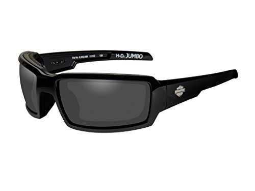 Harley-Davidson Wiley X Jumbo Smoke Grey Motorrad Brille